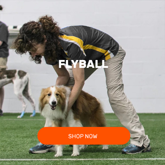 VULCAN-SPORTS-KIT-PACKAGES-FLYBALL